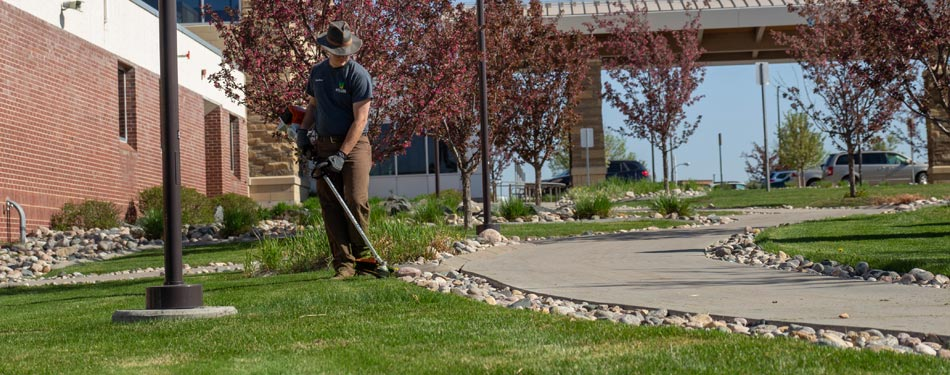 Miller Yard Care & Construction's lawn technician edging a beautiful property.
