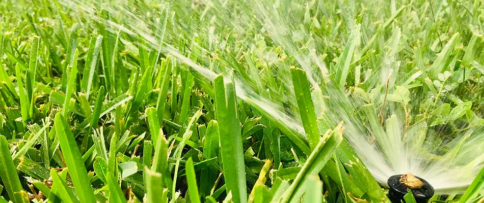 A sprinkler watering the lawn in Detroit Lakes, MN.